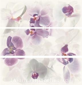 Poza 1 Decor set(3) Seduction purpura/ negro